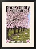 Door County  Wisconsin - Cherry Blossoms