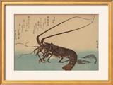 Shrimp and Lobster (Ise Ebi to Shiba Ebi)