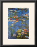 Water Lilies No 3