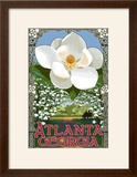 Single White Magnolia - Atlanta  Georgia