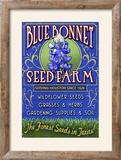 Texas Blue Bonnet Farm