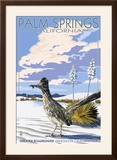 Palm Springs  California - Roadrunner Scene