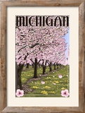 Michigan - Cherry Orchard in Blossom