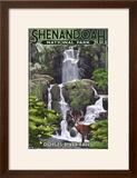 Shenandoah National Park  Virginia - Doyles River Falls