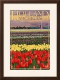 Holland  Michigan - Tulip Fields