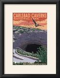Carlsbad Caverns National Park  New Mexico - Natural Entrance
