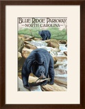 Blue Ridge Parkway  North Carolina - Black Bears Fishing