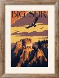 Big Sur  California - Condors