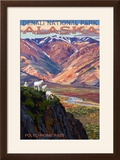Denali National Park  Alaska - Polychrome Pass