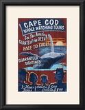 Cape Cod  Massachusetts - Whale Watching