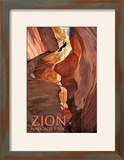 Zion National Park - Canyoneering Scene