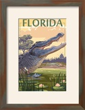 Florida - Alligator Scene