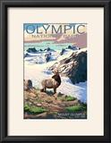 Mt Olympus and Elk - Olympic National Park  Washington
