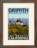 Griffith Observatory Day Scene - Los Angeles  California