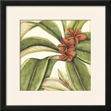 Tropical Blooms and Foliage I