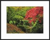 Portland Japanese Garden in Autumn  Portland  Oregon  USA