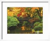 Moon Bridge in Autumn: Portland Japanese Garden  Portland  Oregon  USA