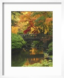 Moon Bridge in Autumn: Portland Japanese Garden  Portland  Oregon  USA