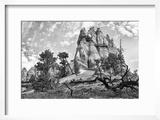 Bryce Amphitheater - Utah - Bryce Canyon National Park - United States