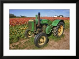 Old John Deere  Wooden Shoe Tulip Farm  Woodburn  Oregon  USA
