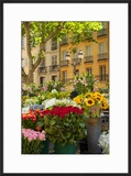 Flowers for Sale on Market Day in Aix-En-Provence  France