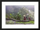 Igorot Woman  Rice Terraces  Agriculture  Philippine Cordilleras  Philippines