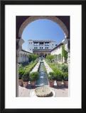 Palacio Del Generalife  Alhambra  Granada  Andalucia  Spain
