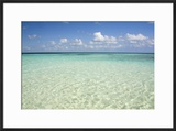Clear Water View of the Caribbean Sea  Goff Caye  Belize