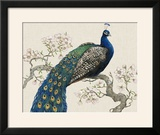Peacock and Blossoms I
