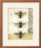 Golden Bees n Butterflies No 1