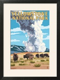 Yellowstone National Park - Old Faithful Geyser and Bison Herd