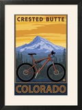 Crested Butte  Colorado - Mountain Bike Scene