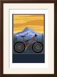 Mountain Bike Scene