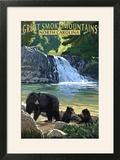 Great Smoky Mountains  North Carolina - Falls