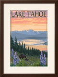 Lake Tahoe - Bear Family and Spring Flowers