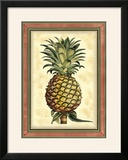 Pineapple Splendor II