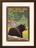 Deep Creek Lake State Park  Maryland - Bear in Forest