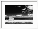 South Miami Beach Landscape with Life Guard Station - Florida