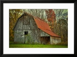 USA  Indiana Rural Landscape  Vine Covered Barn with Red Roof
