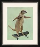 Meerkat on Skateboard
