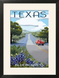 Texas - Bluebonnets and Highway