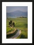 Cypress Trees and Winding Road to Villa Near Pienza  Tuscany  Italy