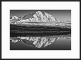 USA  Alaska  Denali  Mt Mckinley from Wonder Lake