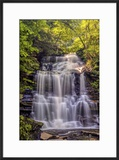 Pennsylvania  Benton  Ricketts Glen State Park Ganoga Falls Cascade