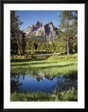 USA  Idaho  Sawtooth Wilderness  a Peak Reflecting in a Meadow Pond