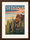Sedona  Arizona - Organ Pipe Cactus