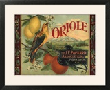 Oriole Brand - Pomona  California - Citrus Crate Label