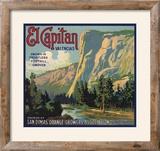 El Capitan Brand - San Dimas  California - Citrus Crate Label