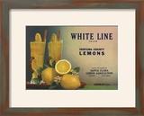 White Line Brand - Oxnard  California - Citrus Crate Label