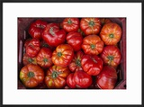 Turkey  Gaziantep  Informally Called Antep  Fresh Vegetables and Fruits are Plentiful Tomatoes